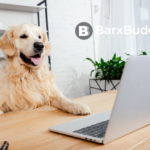 A dog sitting in front of a computer Description automatically generated