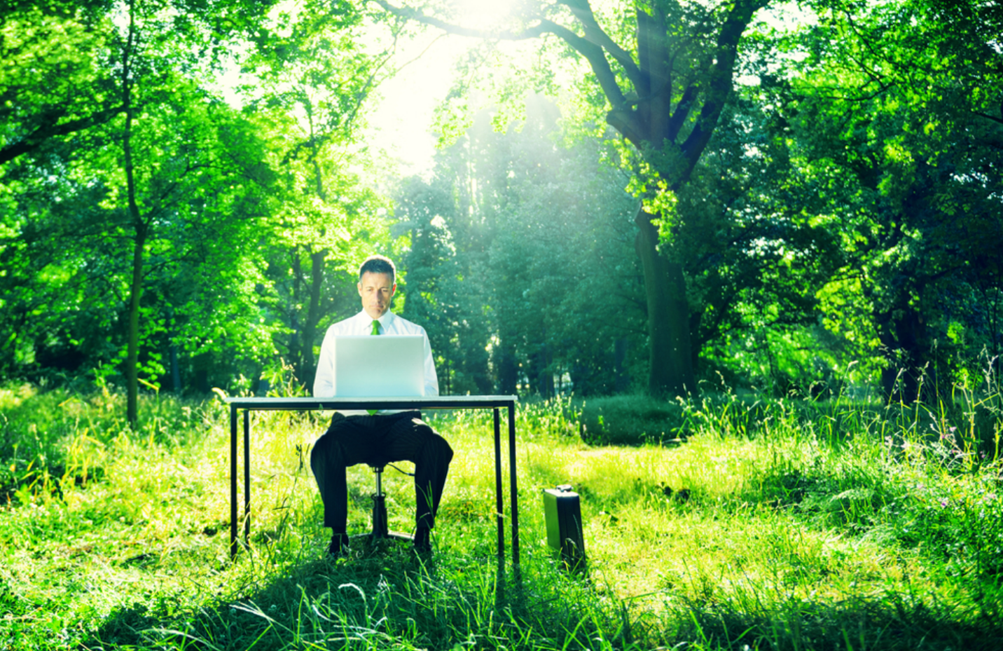 Executive Secrets: How Ryan Dean Hoggan Excels at Building Natural Health Brands
